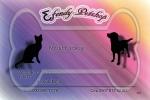 Efendy PetShop